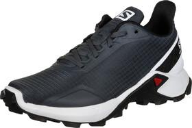 adidas TERREX Two GTX Sko Damer, tech inklegend inkglossy